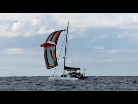 33. SAILING FROM NEW ZEALAND TO MINERVA with twenty boats, zero wind, two mahis and a squid.