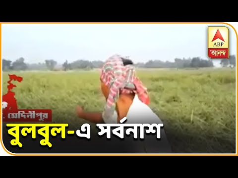 Cyclone Bulbul has destroyed crops in West Midnapur districts