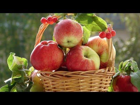 Как провести РАЗГРУЗОЧНЫЙ ДЕНЬ на яблоках для очищения организма и похудения!