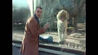 Московский зоопарк: 33 из 50 чудес Москвы(Увлечены Москвой? Лайкните нашу страничку на Фэйсбуке: http://www.facebook.com/50chudesMoskvi Программа