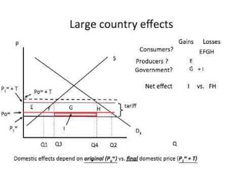 Large country tariff basics