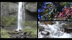 92 Days of Summer - Gresham Oregon