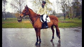 HUBERTUS w KJ Szwadron ✮ Rudy daje czadu! ✮ 25 koni w terenie