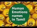 Basic Level   Part 11   Names of the human emotions list in tamil language