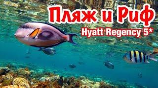 Пляж и Риф Отеля Hyatt Regency Resort 5 Египет 2020 Шарм Эль Шейх 2020 Наама Бей 2020
