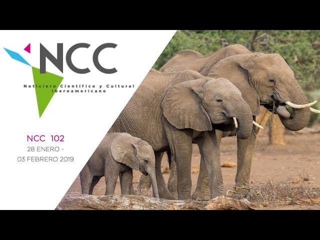 Noticiero Científico y Cultural Iberoamericano, emisión 102. 28 de enero al 03 de febrero 2019.