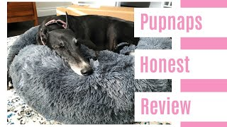 Pupnaps  Honest Review by Olive the Greyhound