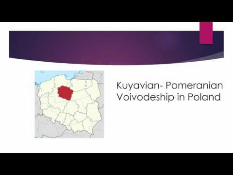 Employee's productivity in the health care sector in Poland – Video abstract [ID 119348]