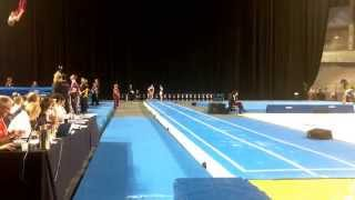2014 Australian Gymnastics Championships Qualification and Final - Lauren Wilson