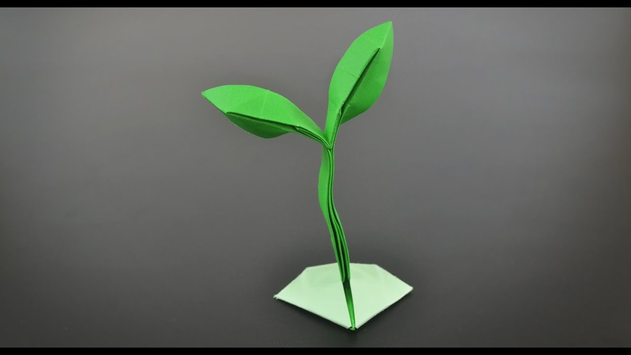 Origami Sprout    Little Plant