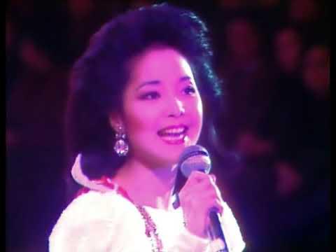 鄧麗君十五周年巡迴演唱會 (84年台北十億個掌聲)