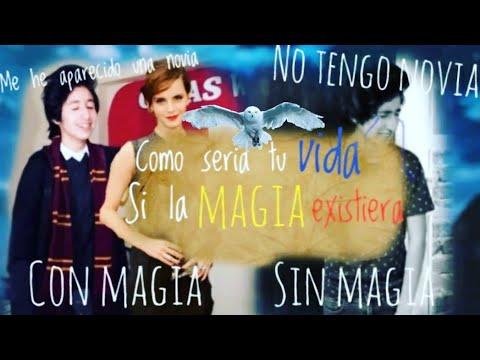 COMO SERIA TU VIDA SI LA MAGIA EXISTIERA(ESPECIAL HARRY POTTER)-GERAS WORLD