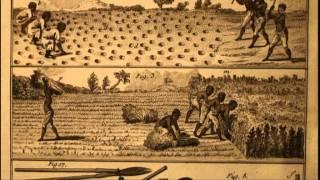 Esclavage et colonisation (3)
