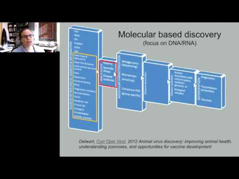 Patricia Pesavento - Linking Viral Discovery with Causality