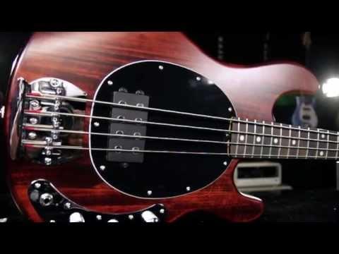 Product Spotlight - Sterling By MusicMan S.U.B.  Ray4 Electric Bass