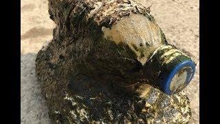 Мужчина выловил из воды бутылку, но «сюрприз» под ней привёл его в ужас!