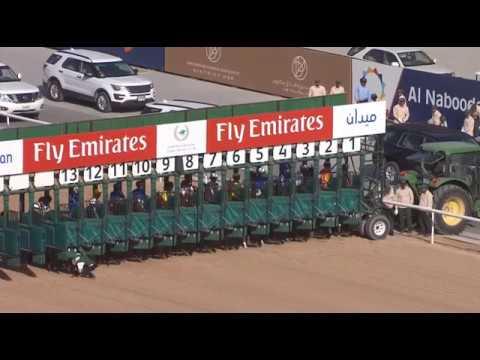 Betting the Dubai World Cup card? Beware of the Golden-rail and kickback in Meydan dirt races