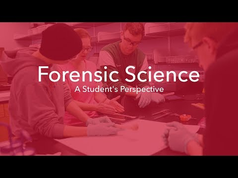 Forensic Science | A Student's Perspective | Maryville University