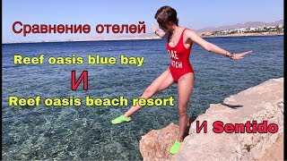 Сравнение Reef oasis blue bay и Reef oasis beach resort & Spa