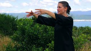 Modules 1 - 5 Review - Tai Chi 5 Minutes a Day