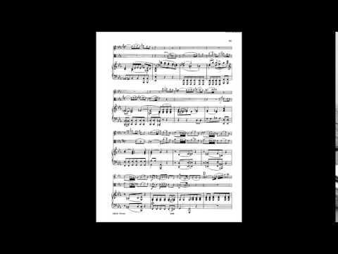 Jonathan Swartz, violin/Catalin Rotaru, bass - Mozart Sinfonia Concertante