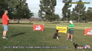 Kuidas alustada koera treeningut frisbeega.