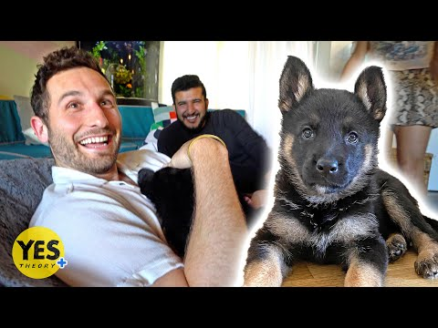 Surprising Best Friend with a New Puppy!!