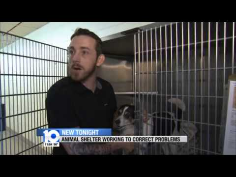 10TV Reports- ACT Ohio Investigation- TOPS Animal Shelter Working to Correct Problems