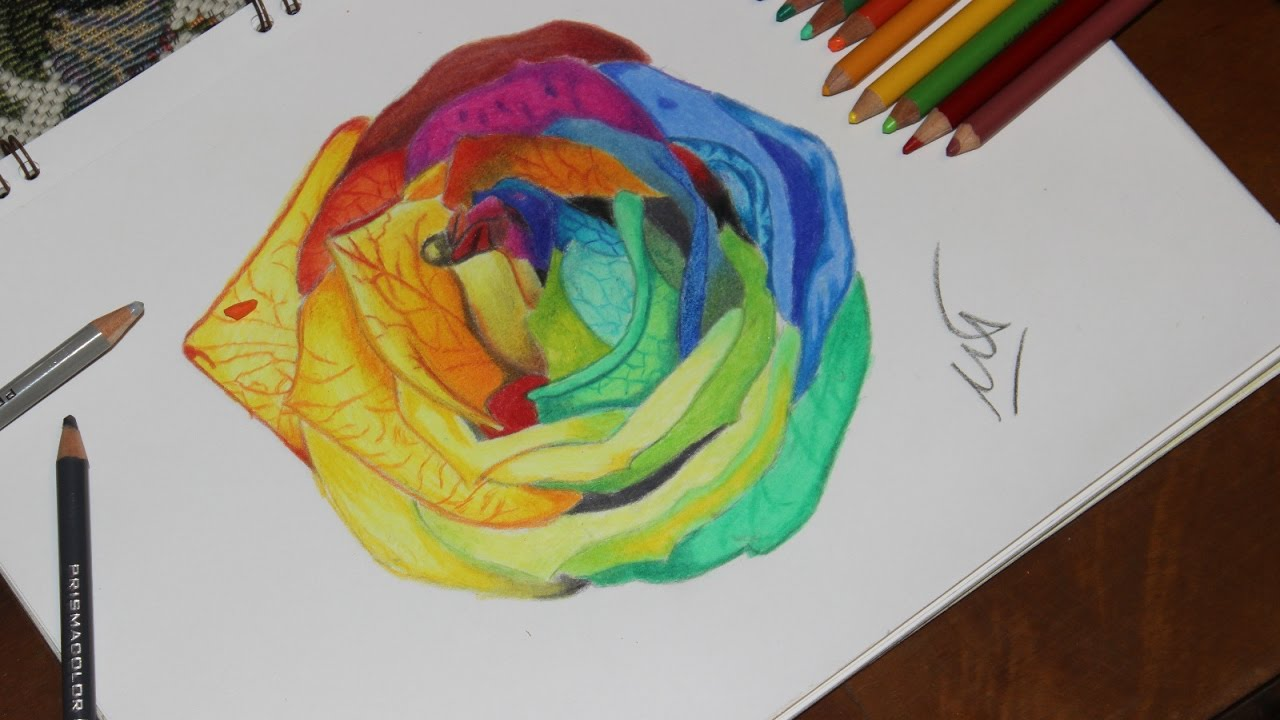 how to draw a rainbow rose