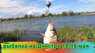 первая ночная рыбалка 15 16 мая Днестр новое тесто понравилось карасю и карпу