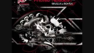 Phonic Request feat  Principles of Flight   Skulls & Bones