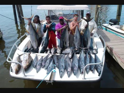 Tuna Fishing Wahoo Fishing Dorado Fishing Charters Offshore  Fishing