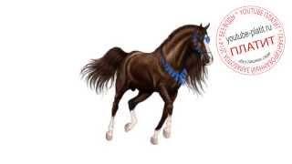 Как поэтапно легко карандашом нарисовать лошадь  Как научиться рисовать лошадь(как нарисовать лошадь, как нарисовать лошадь поэтапно, как нарисовать карандашом лошадь, как нарисовать..., 2014-08-07T06:13:53.000Z)