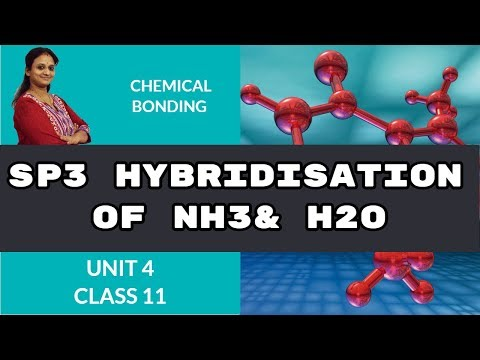 SP3 Hybridisation of NH3 & H2O   chemical bonding   CBSE Class 11 Chemistry