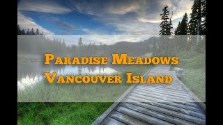 Paradise Meadows mount Washington | Vancouver Island
