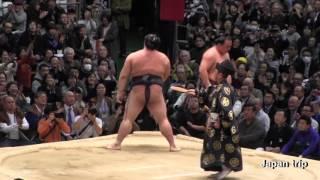 2017大相撲春場所での稀勢の里 vs 蒼国来の取組。