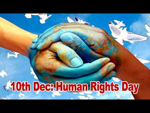 Human Rights Day being celebrated today : NewspointTv