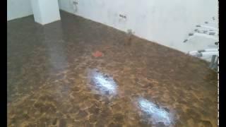 видео Чем и как красить пол из дерева, бетонный пол, из фанеры