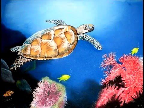 Turtle Reef - Erin Cloud
