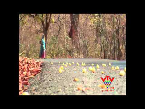 VTV - MAHUDA - DRINKS OF TRIBE , SABARKANTHA