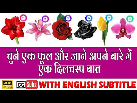 चुने-एक-फूल-और-जाने-अपने-बारे-में-एक-दिलचस्प-बात- -4k-ultrahd-with-subtitle