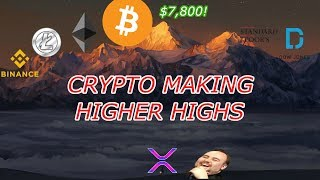Bitcoin LIVE : BTC is Getting Closer to $8,000!  Episode 506 - Crypto Technical Analysis