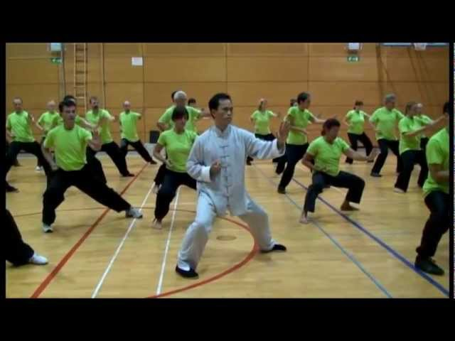 Seminar with Master Fu in Slovenia 2012