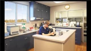 Design Details with Hafen and Lewis: Tricks to make your veterinary clinic work