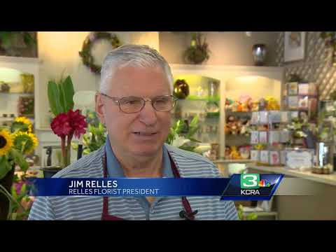 NorCal florists impacted by Hurricane Irma