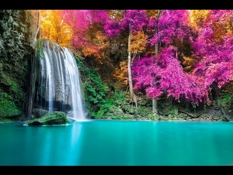 8 Hour Sleep Music, Calm Music for Sleeping, Delta Waves, Relax, Insomnia, Relaxing Music, ☯2817