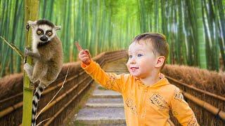 Веселый день в зоопарке с дикими животными