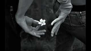 Watch music video: Ingrid Michaelson - My Darling