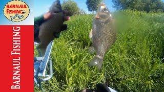 ЛОВЛЯ  КАРАСЯ ВЕСНОЙ .Ловля ОКУНЯ!Отличная рыбалка. (Barnaul Fishing)