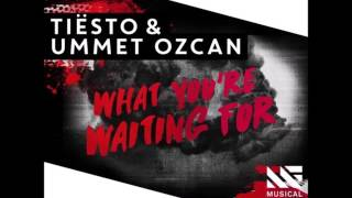 Tiësto & Ummet Ozcan - What You